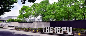 十六鋪碼頭親水平台綠化
